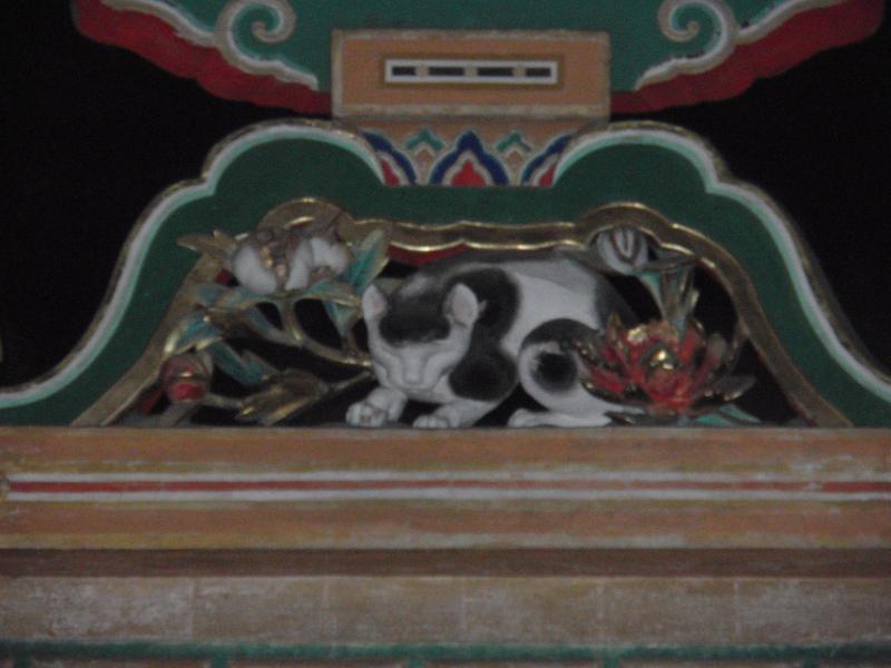 眠り猫_con