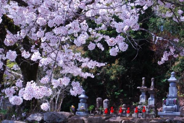 熊谷寺13