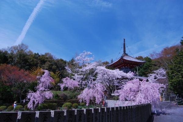 熊谷寺15