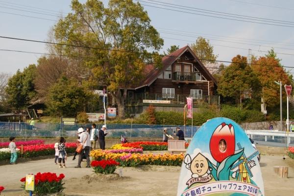 チューリップ公園13