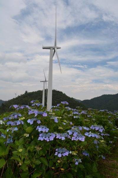 大川原高原5