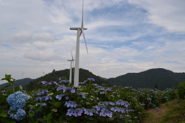 大川原高原14