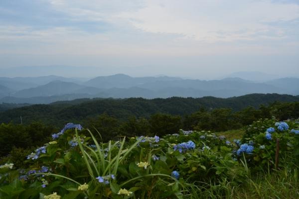 大川原高原19