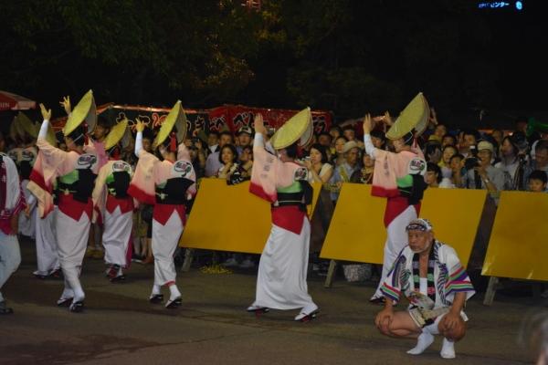 阿波踊り14