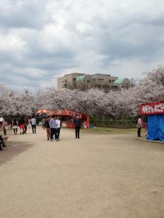 湊山公園(錦公園)