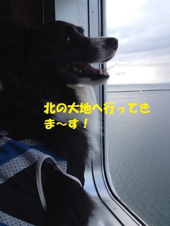 IMG_2189-1.jpg