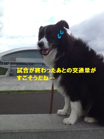 IMG_3400-1.jpg