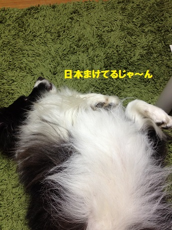 IMG_3439-1.jpg
