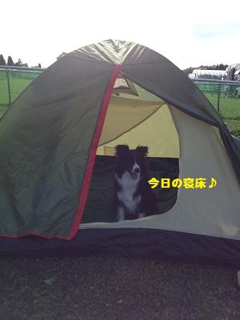 IMG_3482-1.jpg