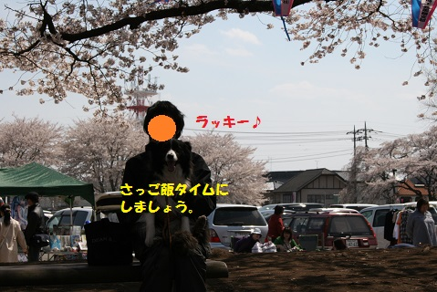 IMG_7230-1.jpg
