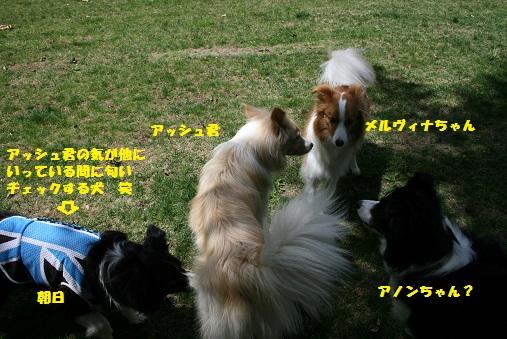 IMG_7403-1.jpg