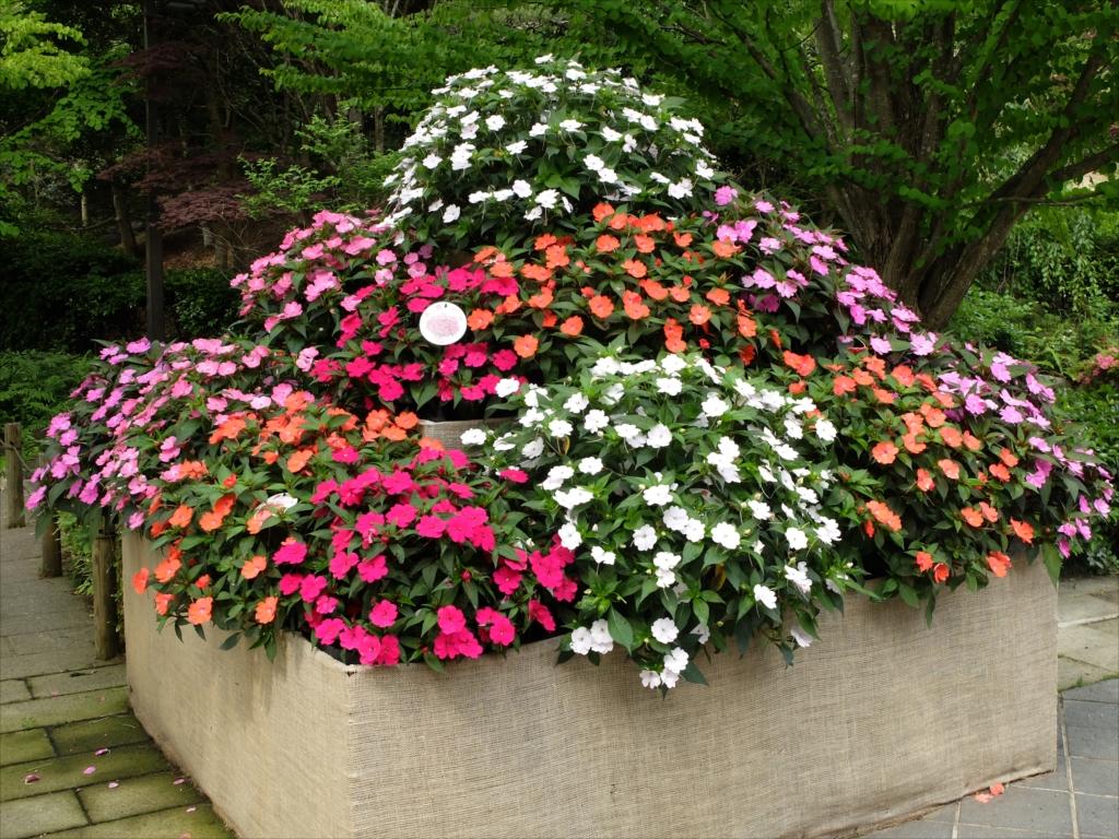 花の飾りが色鮮やか