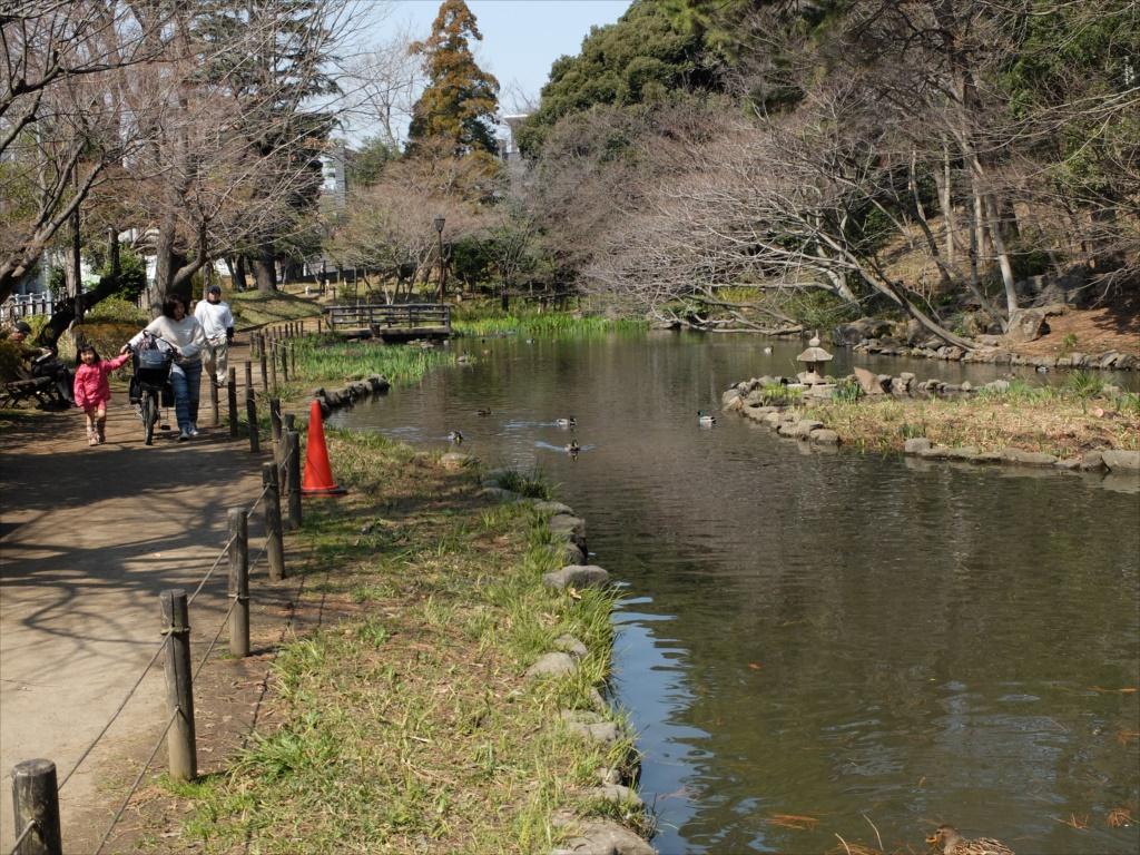 宝来公園の池_7