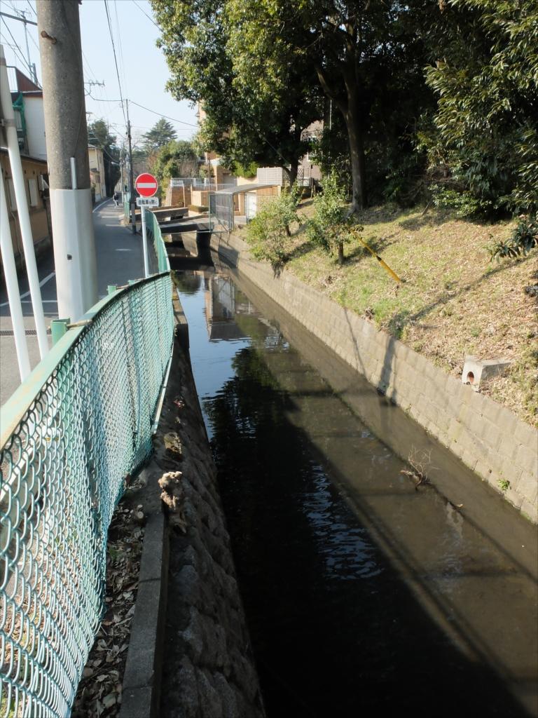 多摩川に平行して丸子川が流れている_1