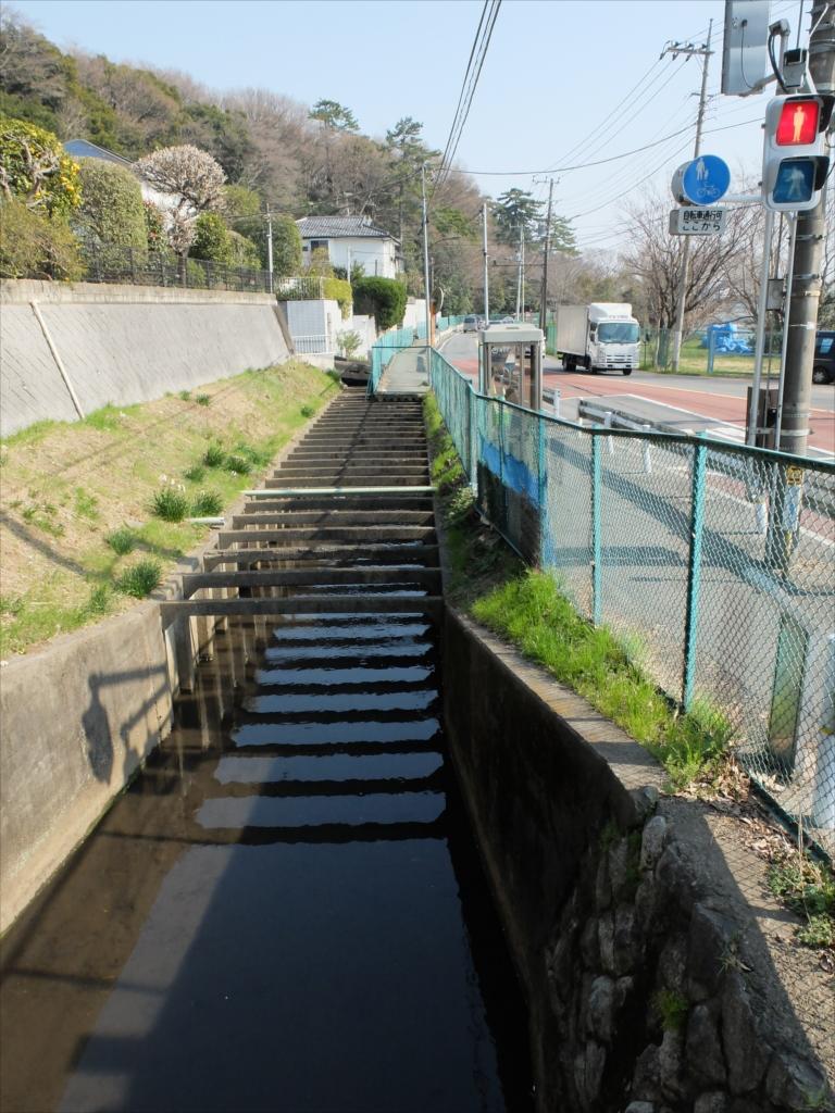 多摩川に平行して丸子川が流れている_2