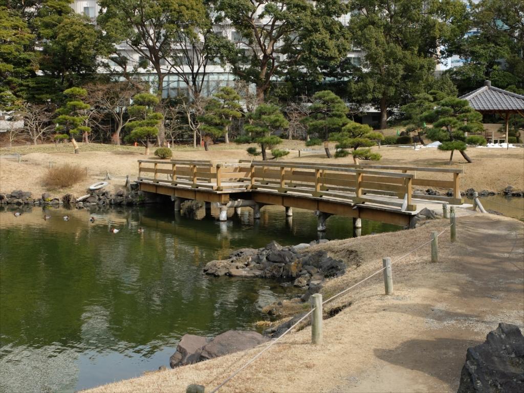 木の橋_1