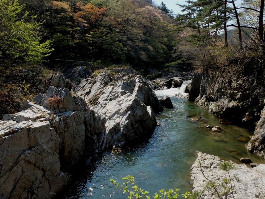 夏井川渓谷_11