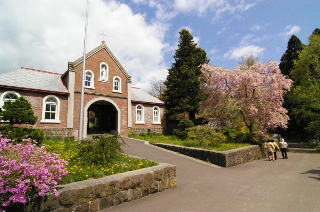 正門前の桜