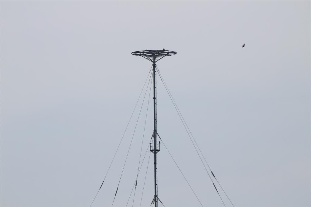 中波無線標識局も見えてきた
