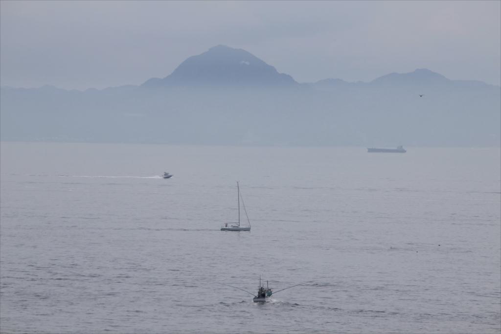 貨物船もヨットもプレジャーボートも釣り船も揃い踏み状態だった