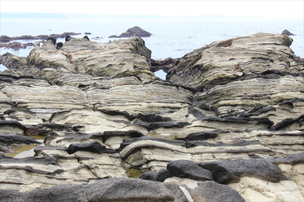 見事な海蝕台_2