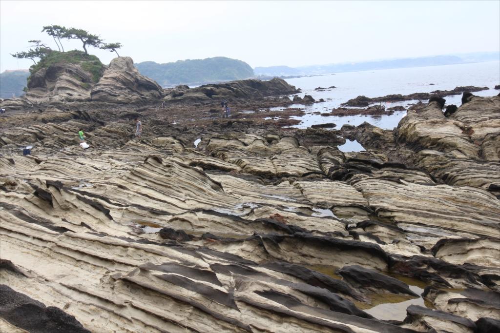 見事な海蝕台_5