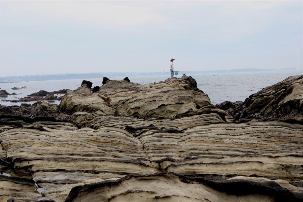 見事な海蝕台_7