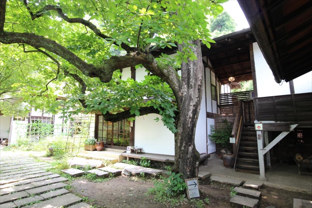 長屋門と柿の木_4