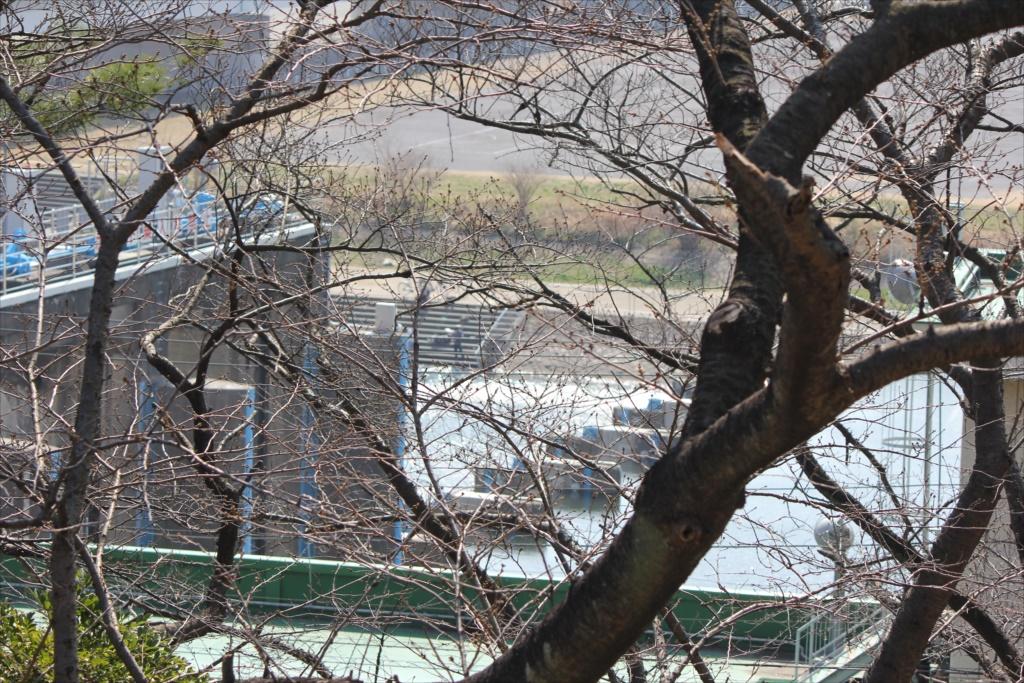 多摩川鉄橋などの眺望_3