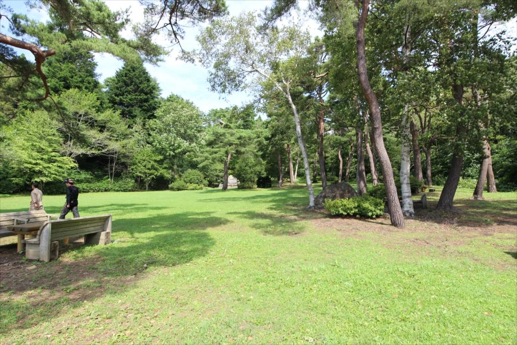 駐車場前の庭