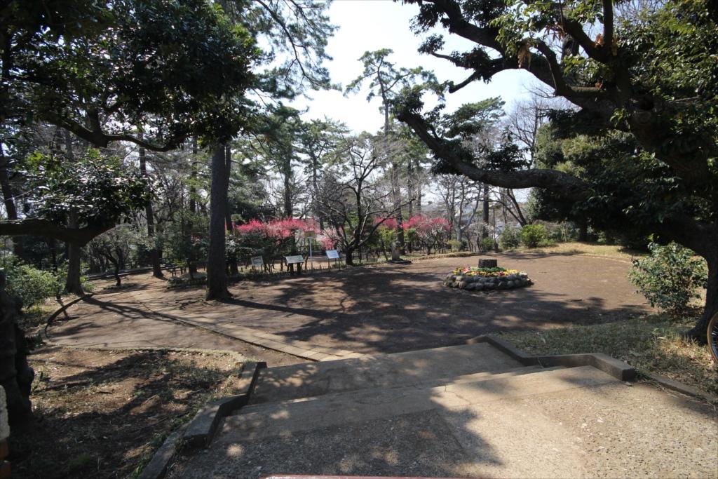 宝来公園_2