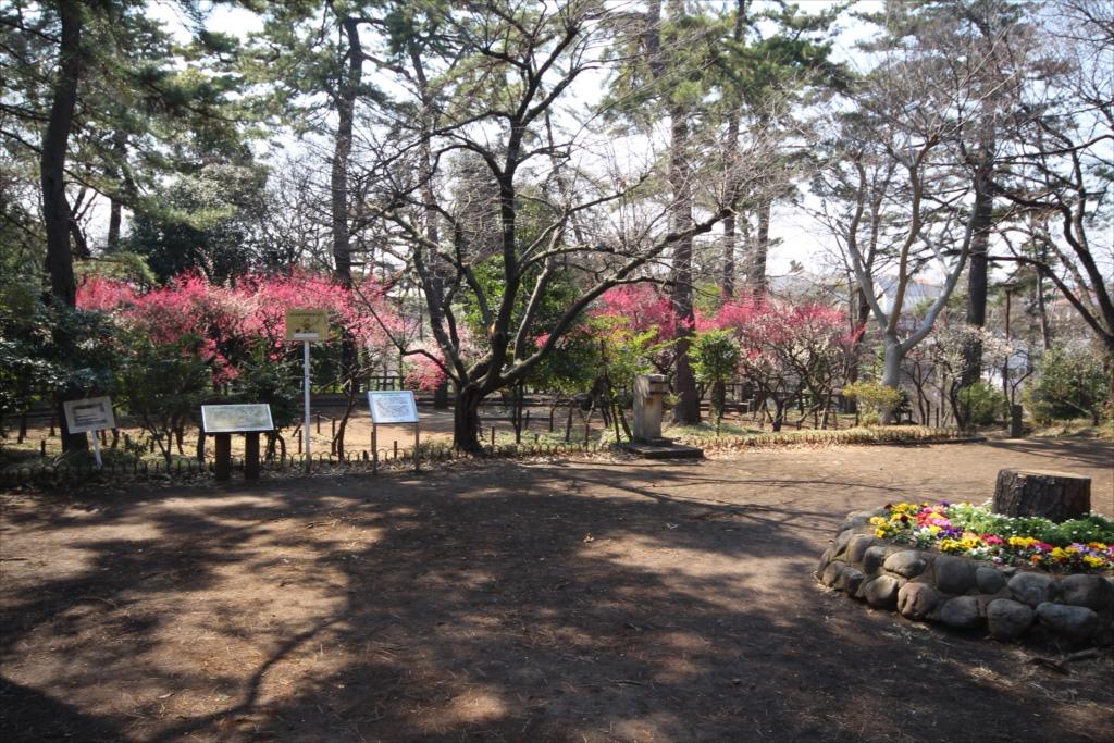 宝来公園_3