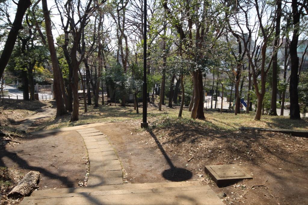 宝来公園_5