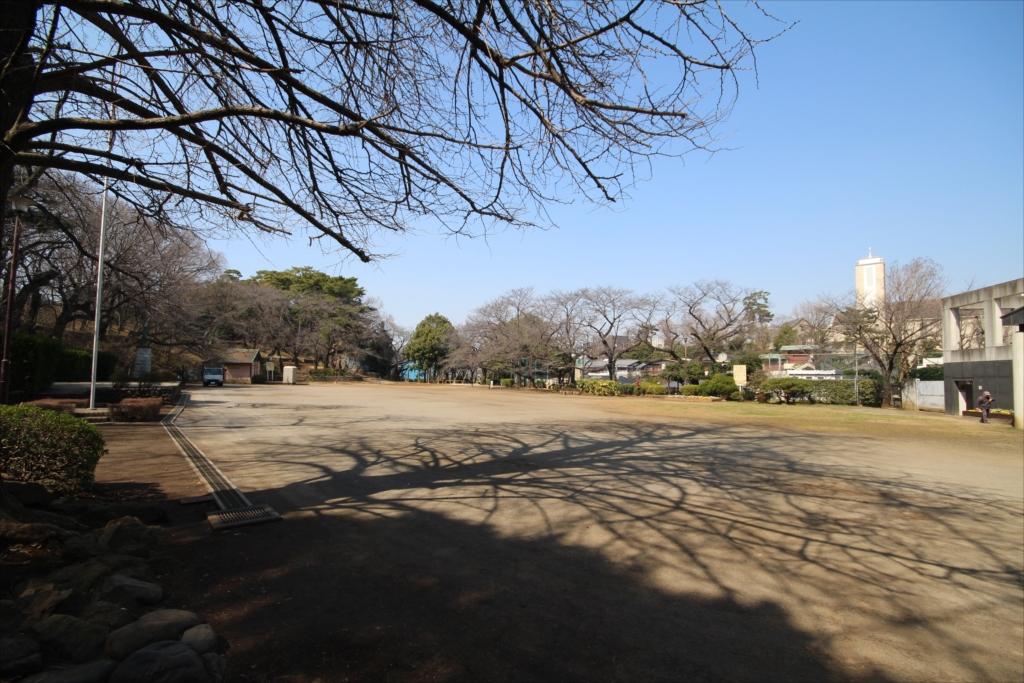 多摩川台古墳群の下の運動広場