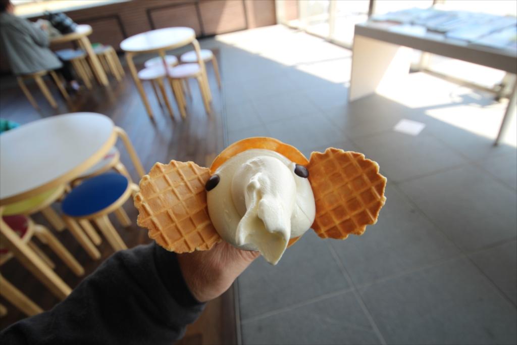 象の鼻テラスのソフトクリーム