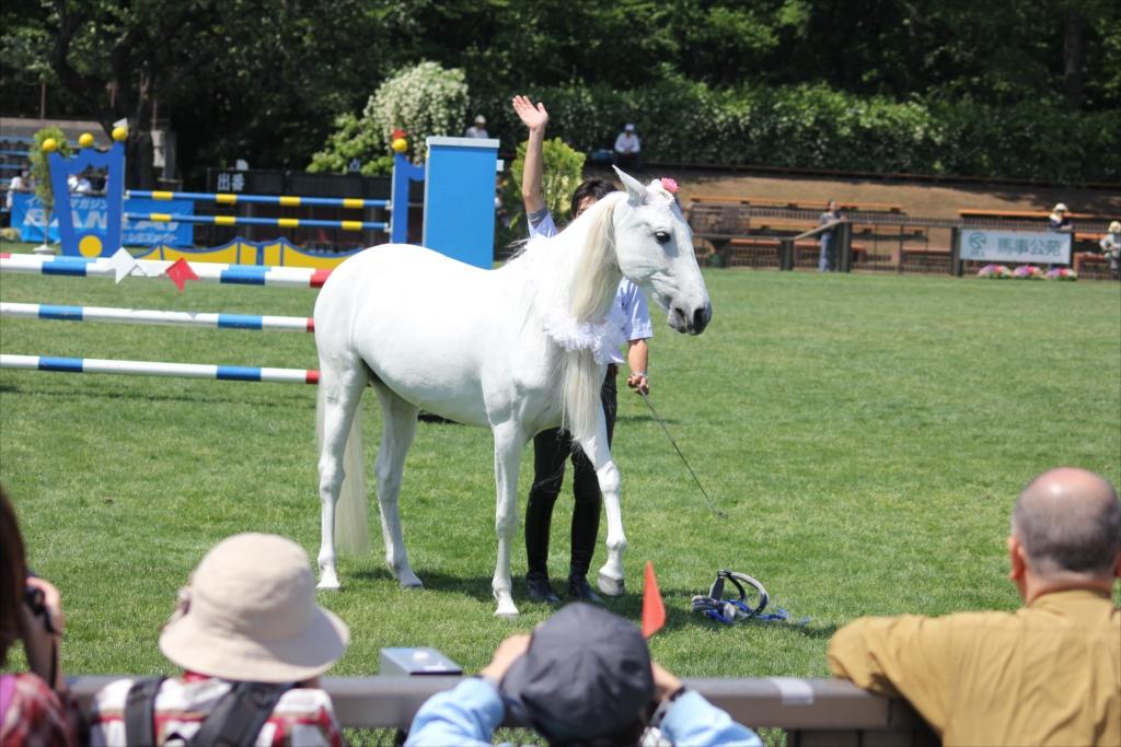 馬の挨拶_2