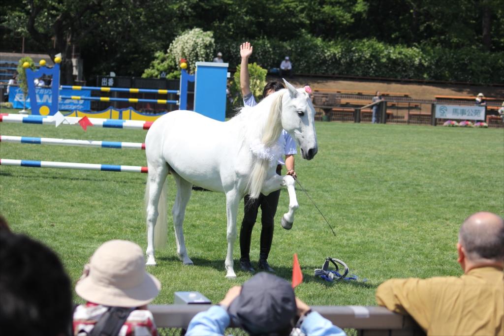 馬の挨拶_3