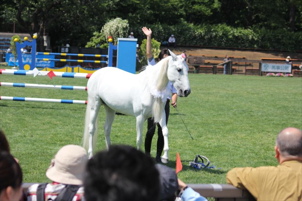 馬の挨拶_5