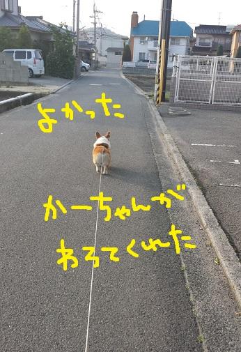 20140521-2.jpg