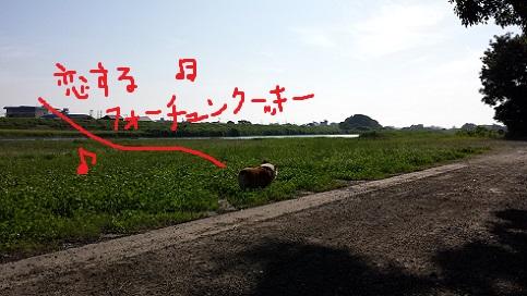 20140624-5.jpg