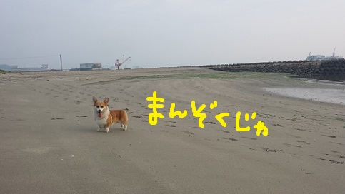 20140701-10.jpg