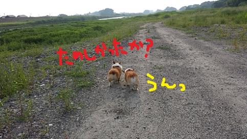 20140722-11.jpg