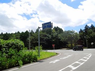 DSCN6538.jpg