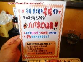 麺厨房華燕JR高槻店01,05s
