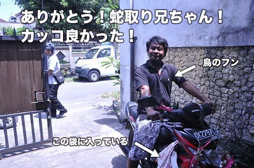 kobura-29-011.jpg