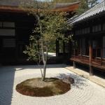 建仁寺の坪庭