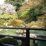 青蓮院門跡の池
