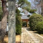 源光庵の門