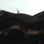東本願寺のさぎ