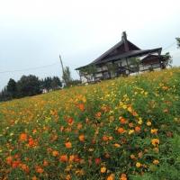 ryuki_bukkyou.jpg